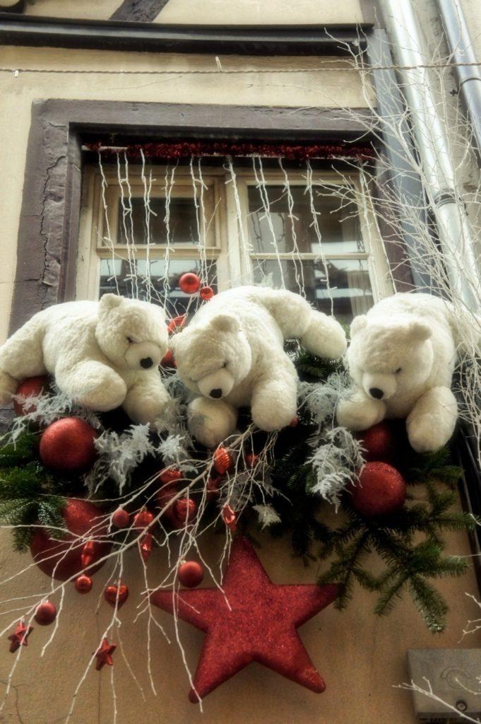 Les ours envahissants