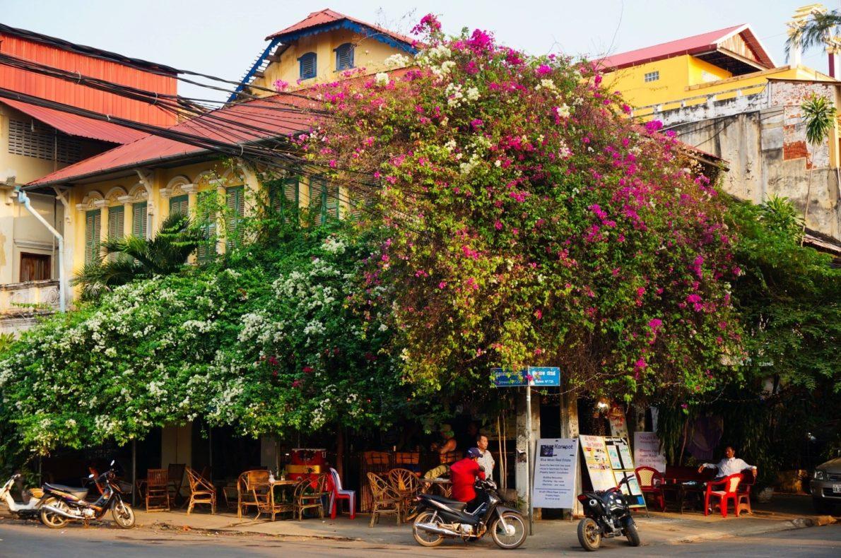 Il n'y a pas beaucoup de circulation dans les rues de Kampot