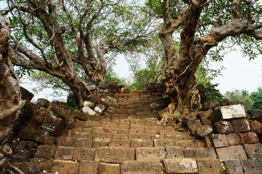 Escalier en pierre à Vat Phou