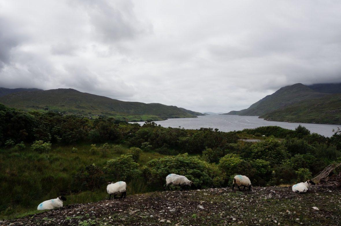 Irlande roadtrip itinéraire