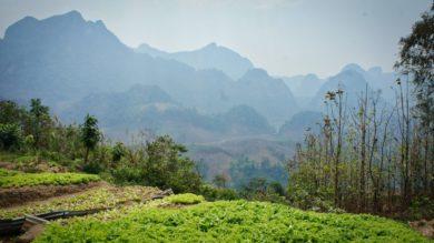 Le Laos du nord #2: De Ban Sisangvone à Luang Prabang