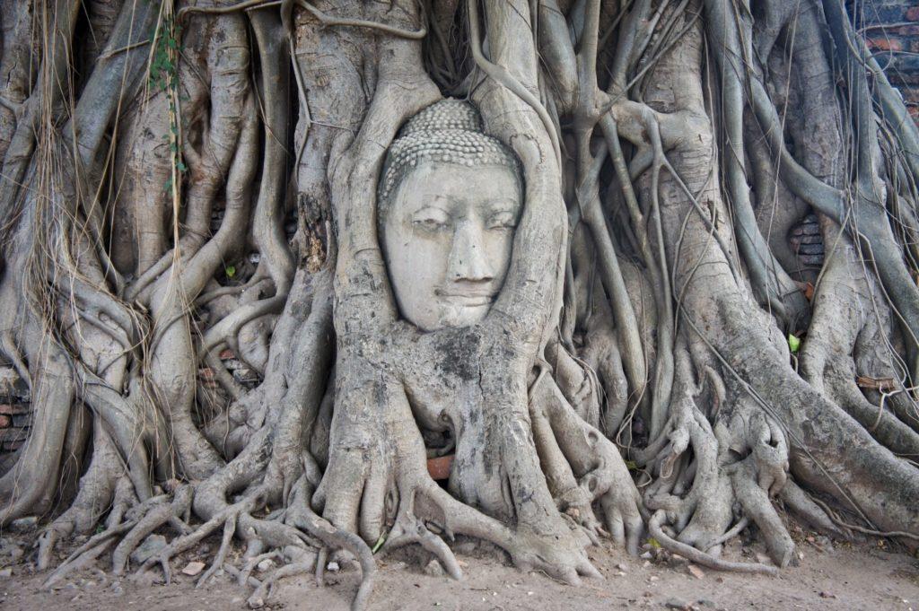 temple à Ayutthaya en Thaïlande
