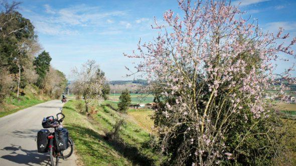 Voyage à vélo de Banyoles à Gérone