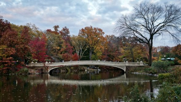 Pont à Central Park New York