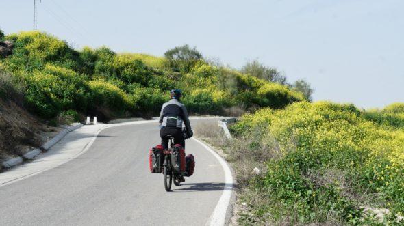 Jérôme à vélo au milieu de champs de colza