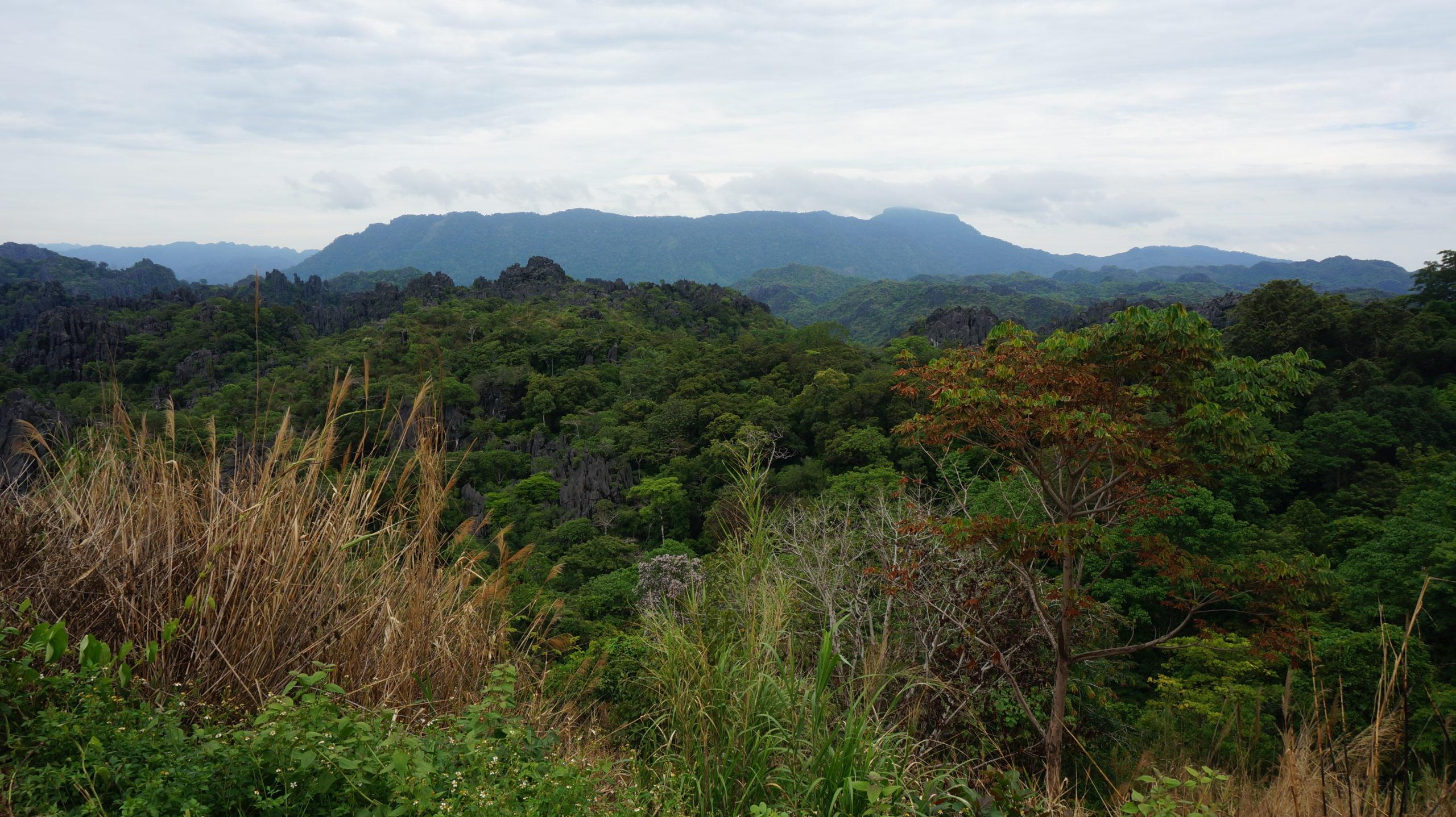 Vue sur les monts karstiques et les forêts dans la boucle de Thakhek