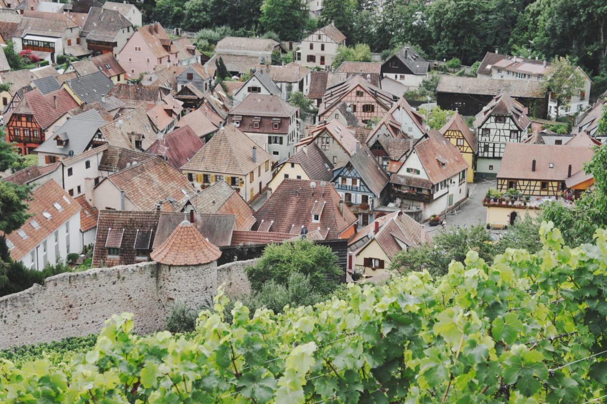 Le village de Ribeauvillé vu d'en haut