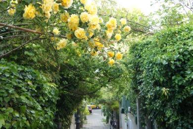 La Mouzaïa : balade champêtre à Paris
