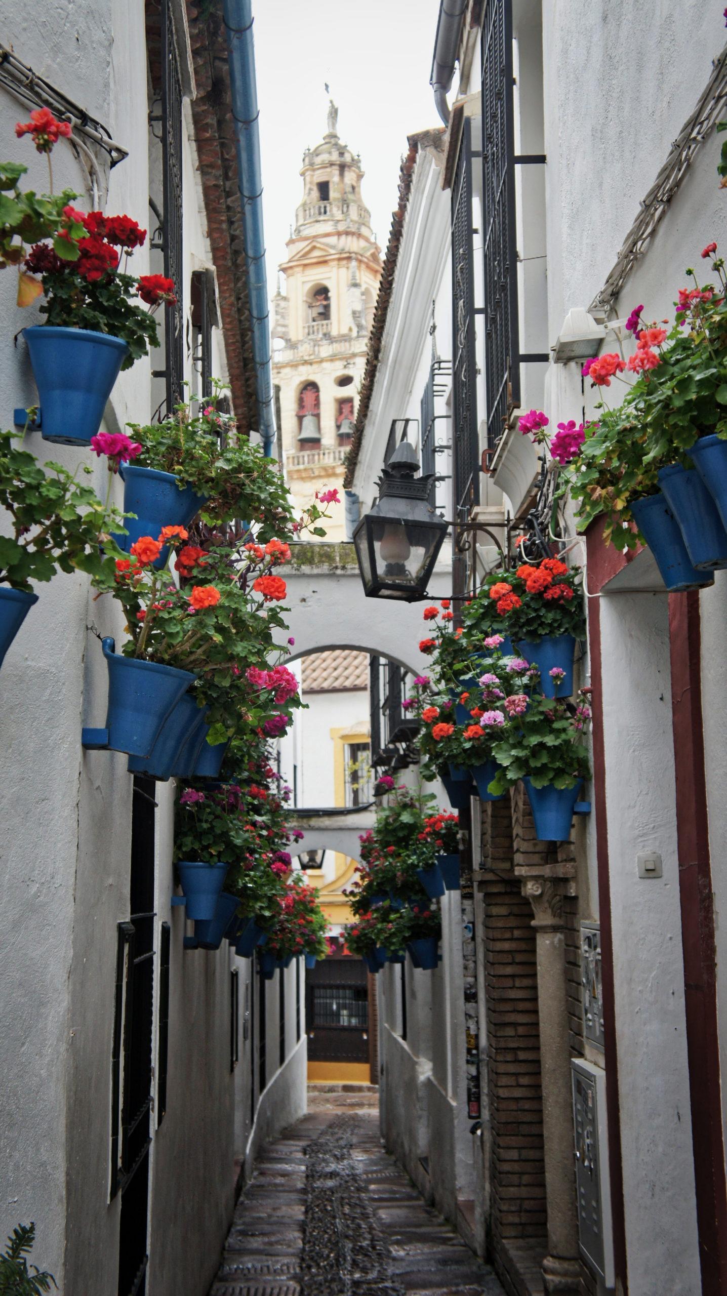 Calleja de las Flores à Cordoue