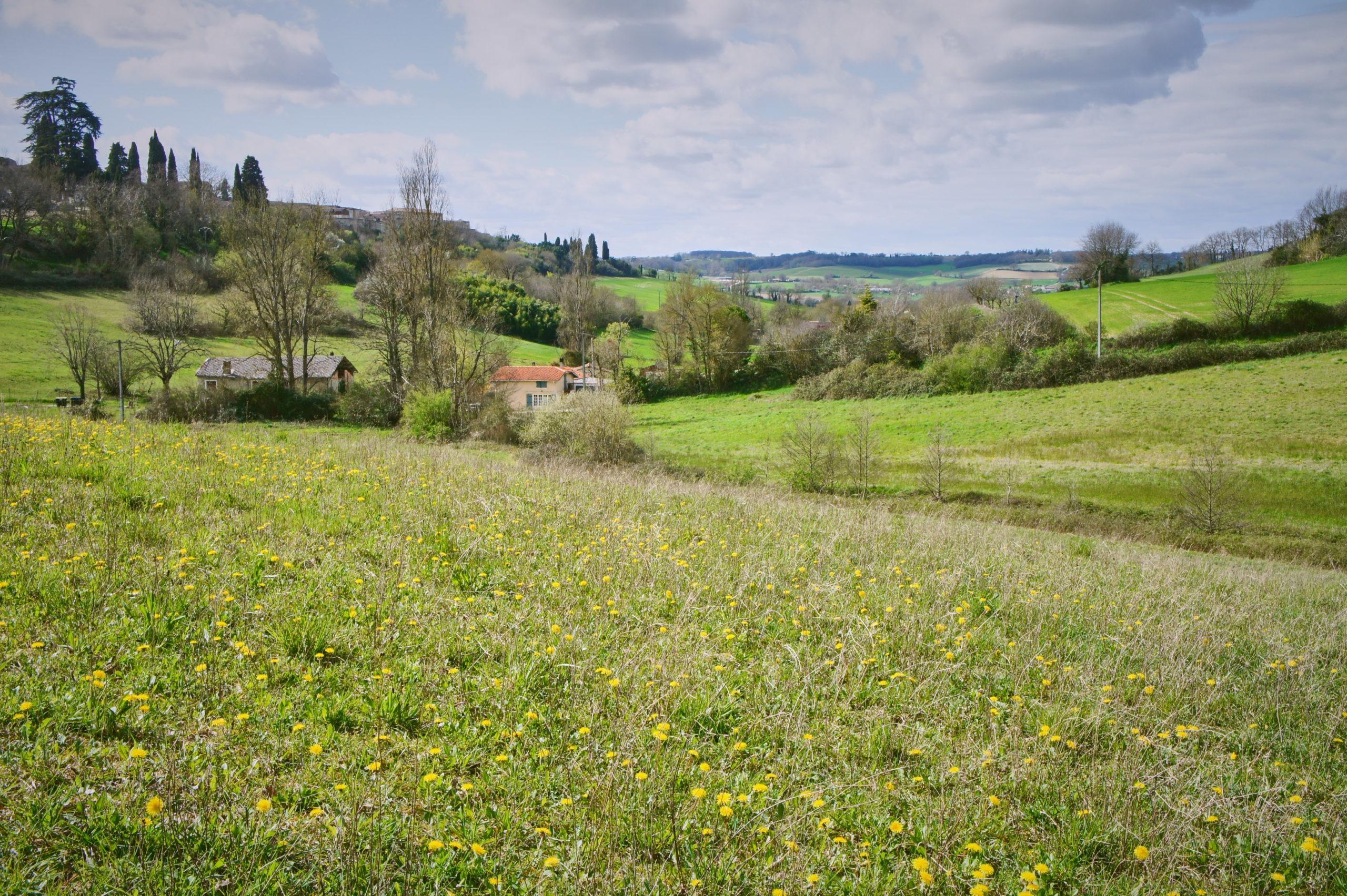 Les paysages de la Lomagne et du Gers à Lectoure