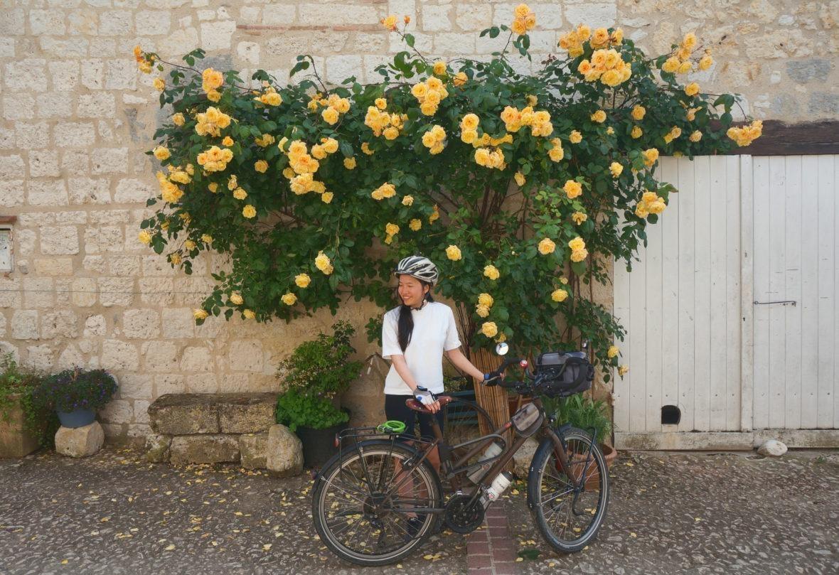 Les murs de Castéra-Lecturois recouverts de roses