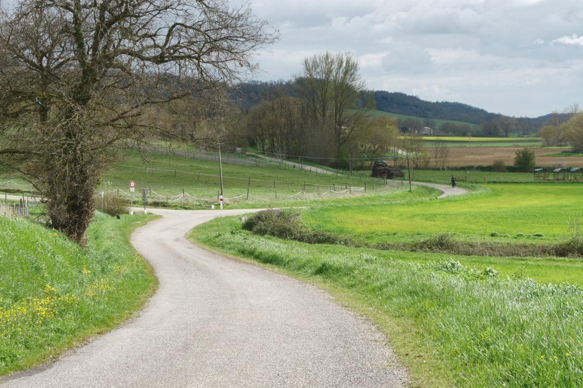 Route à Gramont, en Lomagne-Gascogne du Gers